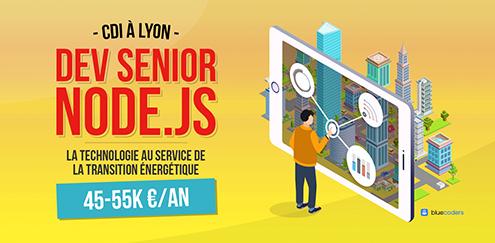 CDI - Lead Senior Node.JS - 55K - Lyon